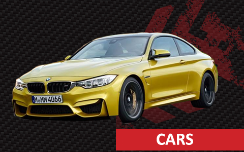 CARS2-new